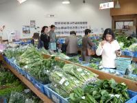 とれたて新鮮なお野菜や手作り加工品が勢ぞろい!