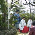 A traditional poetry reading party in cherry blossoms