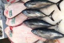 追加料1,000円で新鮮な地魚使用のコースも可能