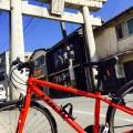 サイクリング&海鮮丼