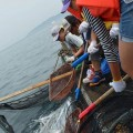 玄海島で定置網漁業体験!!