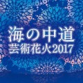 「海の中道芸術花火2017」花火と音楽のマリアージュ