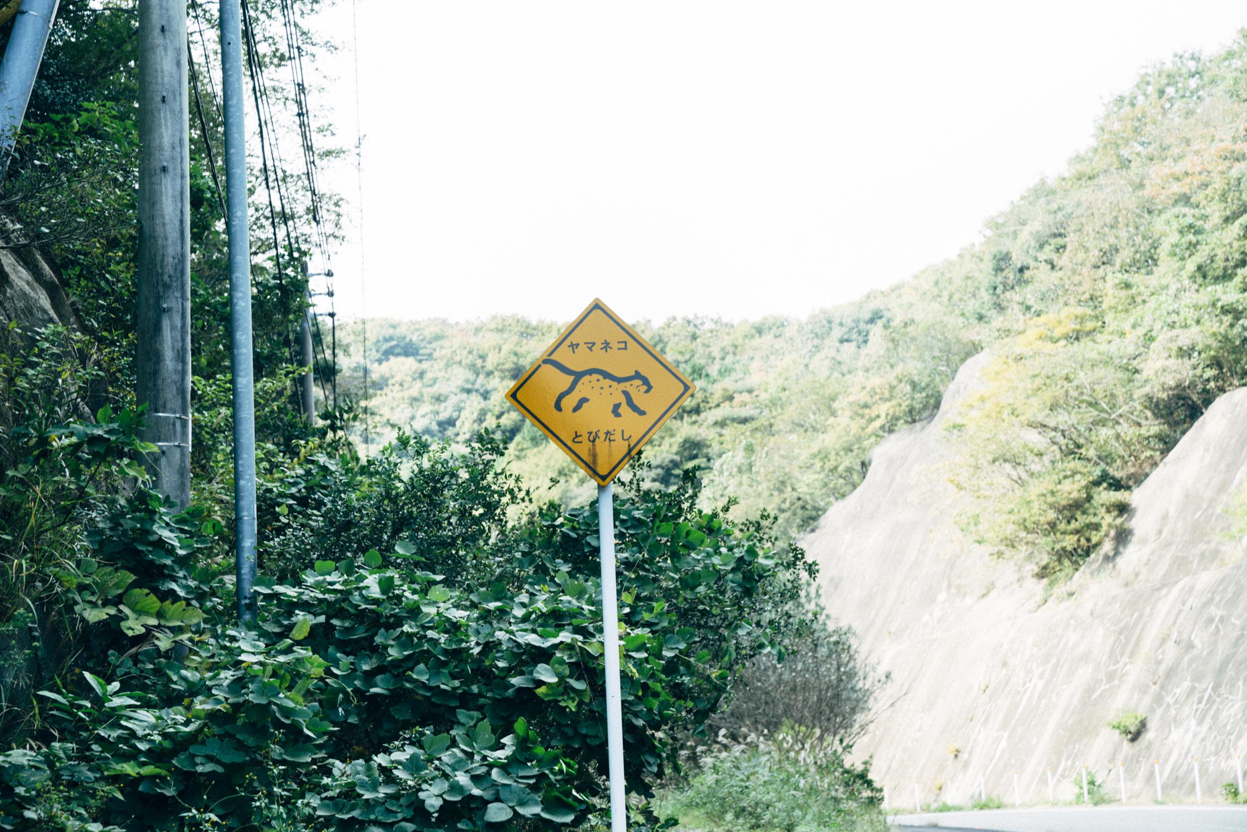 ツシマヤマネコの看板