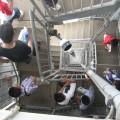 体育の日恒例!第55回 福岡タワー「超ウルトラ階段のぼり大会」