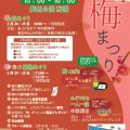 福岡城 梅まつり【舞鶴公園梅園】梅cafeやお城めぐり、フルート演奏会な …