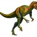 アロサウルス(復元画:月本佳代美  )
