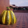 Kusama Yayoi,Pumpkin, 1994.Collection of Fukuoka Art Museum
