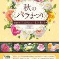 秋のバラまつり2018【福岡市植物園】250種1100株のバラが咲き誇る!
