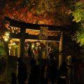 ライトアップ&もみじ祭り【紅葉八幡宮】美しいライトアップ!露店や紙灯 …