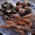 新鮮な魚介を串揚げに。素材本来の味が楽しめます!