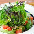 野菜もこだわります!%0A朝倉野菜のヘルシーサラダ!