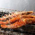 旨い料理と旨い酒♪九州グルメもおまかせください!