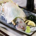 イカの活き姿造り♪新鮮な魚介や九州料理、創作和食が人気!!