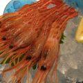 鮮魚料理は日替りです。本日の仕入れで決まります。