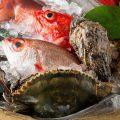 旬の魚介を日替わりでご提供。粋で洗練された味わいをどうぞ