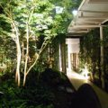 離れからは優しいライトで浮かぶ庭園が眺めらます