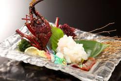 【伊勢海老の活造り】高級感溢れる美味しさです。絶品!