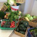 厳選した安全な野菜だけを使用しています!