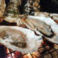 今年も牡蠣のシーズンがスタート♪糸島志摩船越産の牡蠣です。